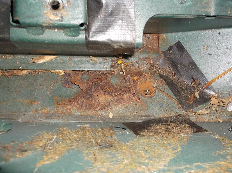 internal seat belt mount rust damage