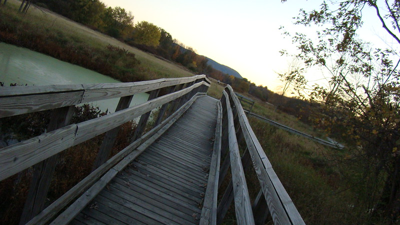 App.Trail Fall 2008,Fl. Maine 203.JPG