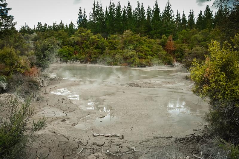 Rotorua-104.jpg
