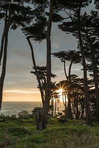 20170201_SAN_FRANCISCO (14 of 24)