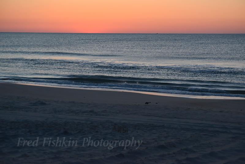 Sunrise 04_30_18.JPG