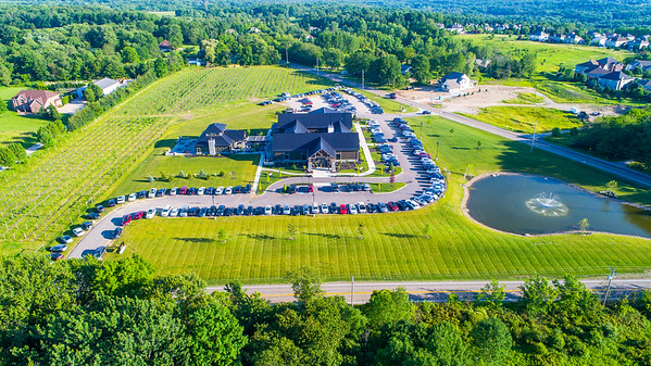 Michael Angelo's Winery Summer Drone