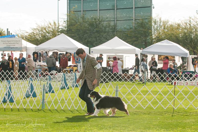 20170114_Kachina Kennel Club_Aussies-16.jpg