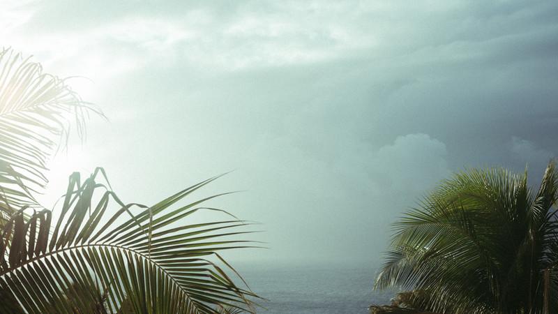 Maui2019-12.jpg