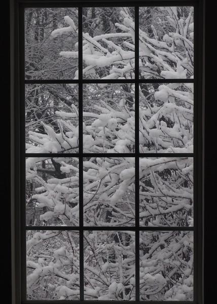 Snowy window.jpg