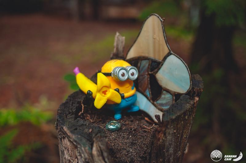 BananaCamPhoto-514.jpg