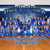 0050 NMvolleyball138x10