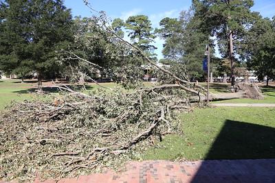 16 Hurricane Matthew Damage