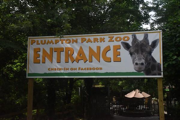 Rising Sun - Plumpton Park Zoo