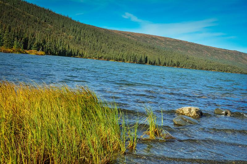 Denali-National-Park-133.jpg
