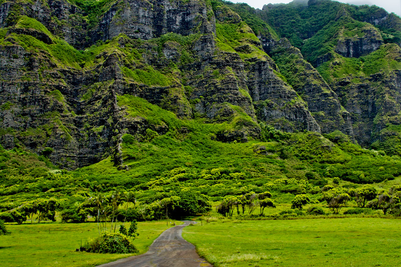 Journey into Oahu Photograph 81