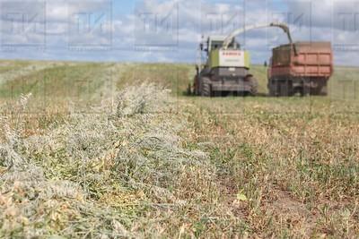 Фермерские хозяйства Высокогорского района