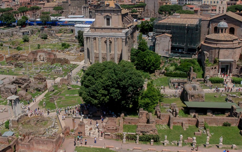 The Forum from nearby Palatine Hill.