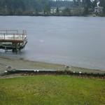 Spanaway Lake Froze