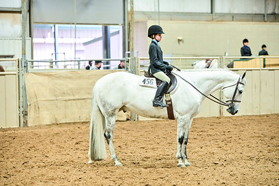 Small Fry Equitation