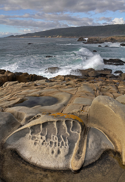 Tefone Formation - Salt Point - Northern California