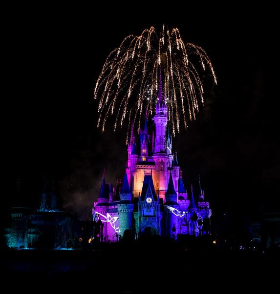 Disney-8242.jpg
