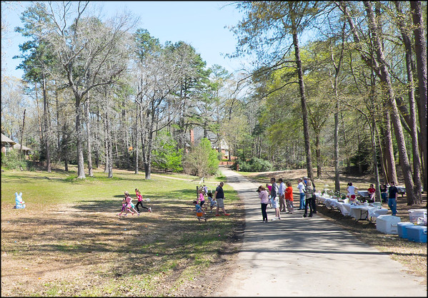 2015-03-28 Country Place Picnic