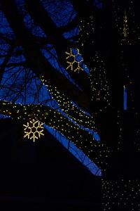 Giles Holiday Tree 2020
