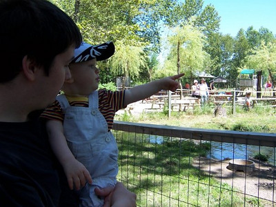 Evan at Elmvale Zoo - June 2009
