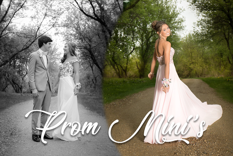 Prom Mini.jpg