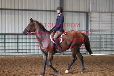 6. HUNTER UNDER SADDLE - 17 & UNDER