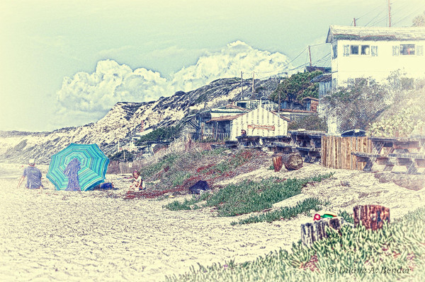 Vintage - Beach Side And Houses