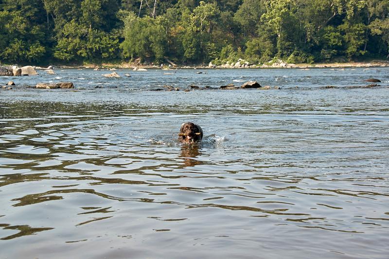 Morgen at Great Falls Park 17 - 2007.07.07 - DSC_0386.jpg
