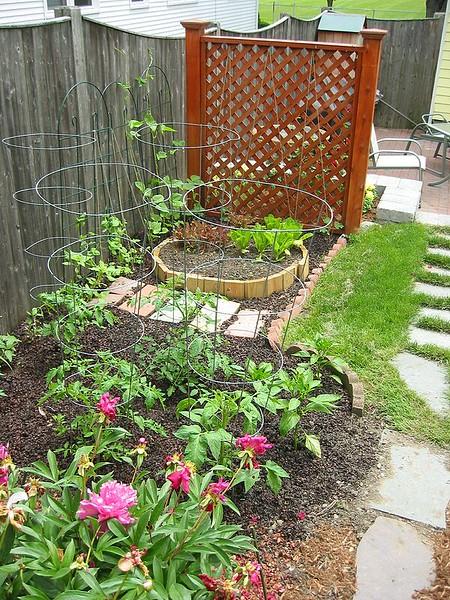 garden-2003-06-0171_std.jpg