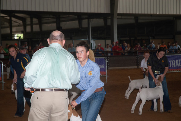 Tulsa Wether Goat Show Day 2