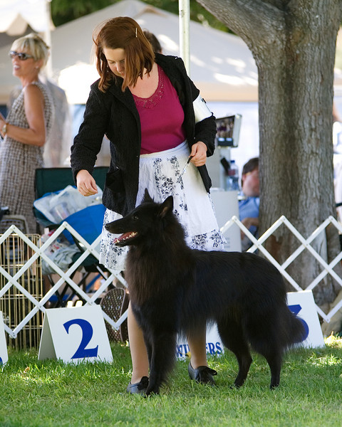 Cabrillo Kennel Club - September 1, 2012