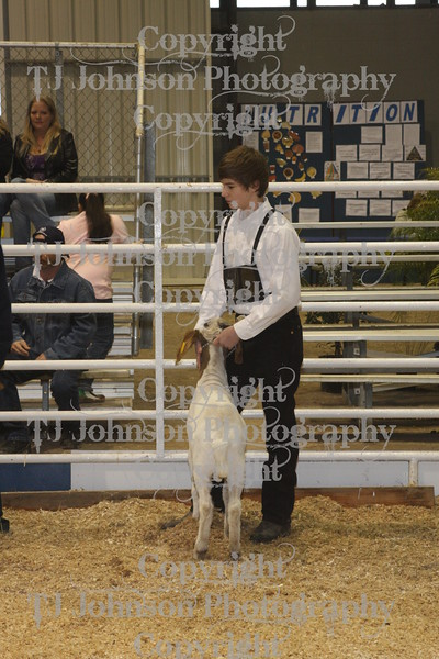 2010 Spring Branch FFA Goats