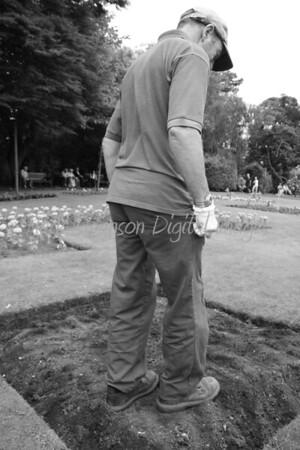 The Groundsmen of Abbey Gardens, Bury St Edmunds