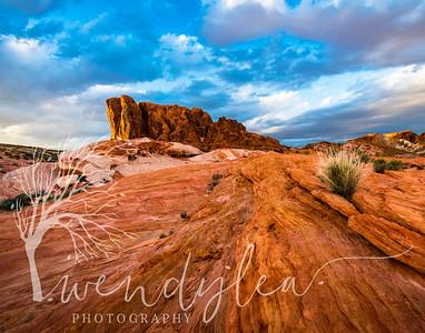 Desert,  Southwest