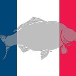 WCC-flag-France-240x160.jpg