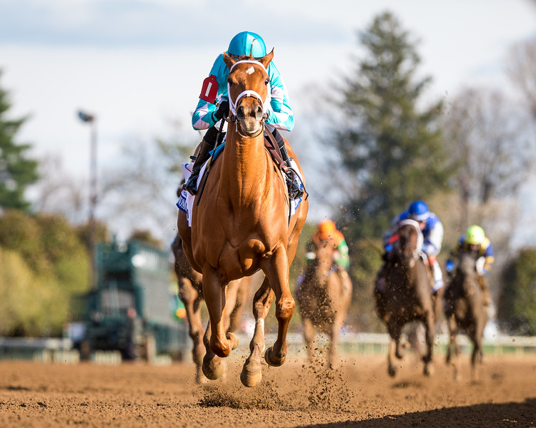 Monomoy Girl (Tapizar) wins the Ashland (G1) at Keeneland on 4.7.2018. Florent Geroux up, Brad Cox trainer, Michael Dubb, Monomoy Stables owners.