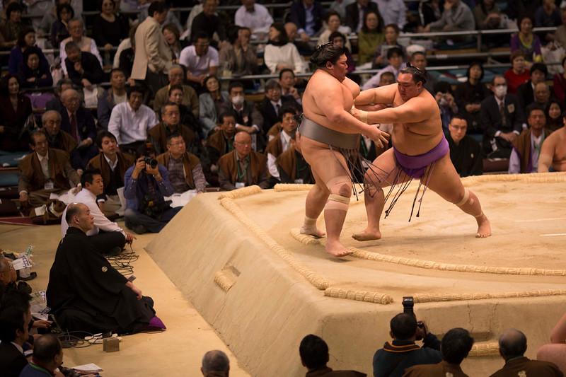 Osaka Sumo 220313 53 .jpg