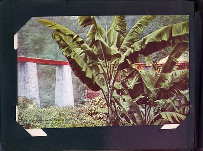 Postcard album 1912 Mexico & Guatemala