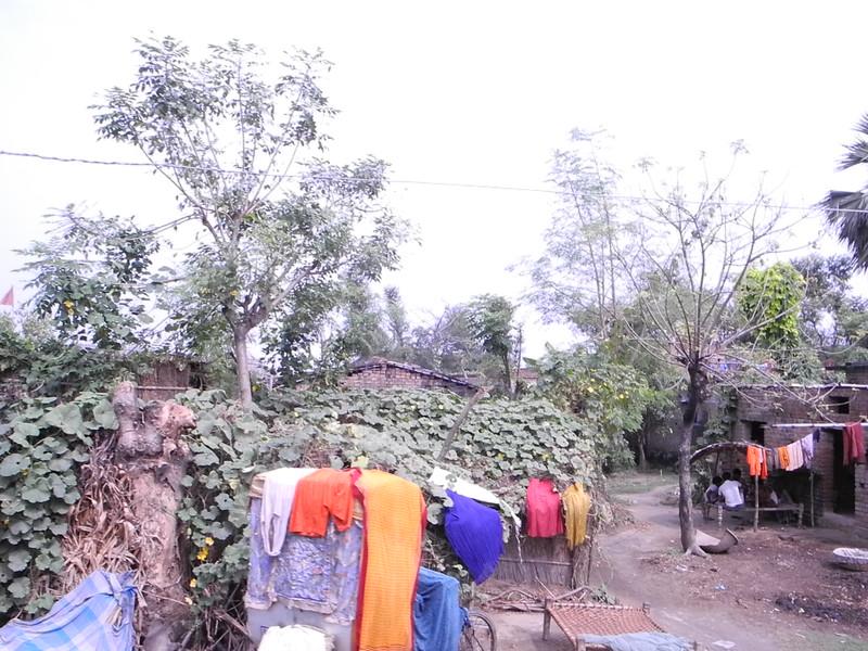 india&nepal2011 263.jpg