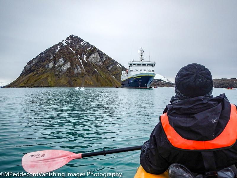 KayakerMary heads back to the NG amid small icebergs