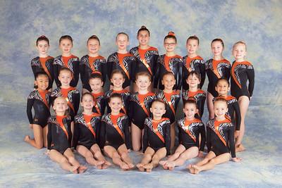 Team 2014 - Girls JO Level 3