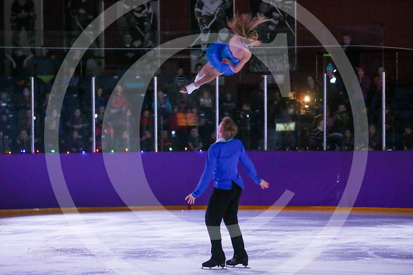 2016 Ice Show DVD Slideshow Photos.