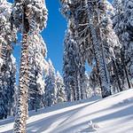 Menzenschwand ski tour, Baden-Württemberg 2012-02-05