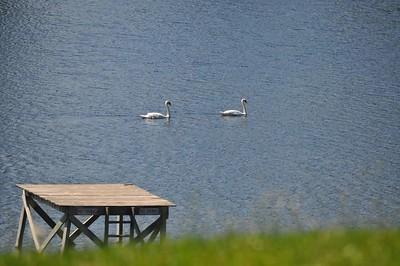 2012 Murray's Lake