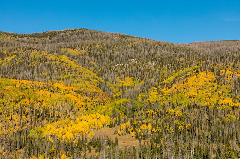 Colorado19_5D4-1562.jpg