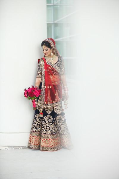 Le Cape Weddings - Indian Wedding - Day 4 - Megan and Karthik Formals 54.jpg
