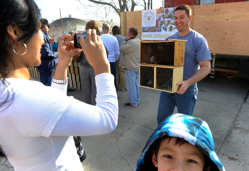 . DENVER, CO - MAY 4: Patty Lenway, left, gets a photo of husband Chris with their Italian and Carniolan bees. Son Duvan, 7, lower right would rather keep a little distance. The Denver family has had hives for about seven years. About 300 backyard beekeepers are on hand to pick up their package bees from Apis Hive Co. out of Grand Junction, CO. Each package contains about 10,000 workers and drones as well as one queen. (Photo By Kathryn Scott Osler/The Denver Post)
