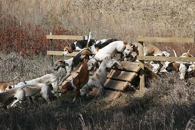 North Hills Hunt / Opening Hunt / 10-21-2012