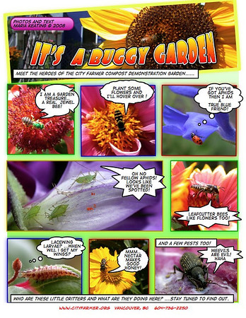 Compost and Bugs Comix