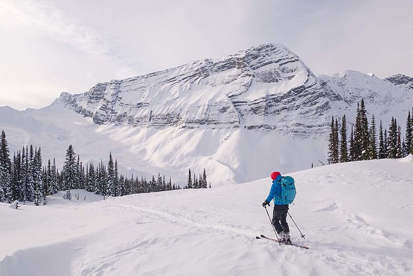 Campbell Icefield February 2019
